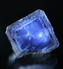 fine minerals - blue fluorite